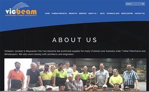 digital strategy, Vicbeam, team